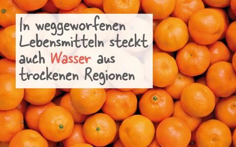 rebords_foodwaste_harassendeckel- orangen